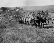 Artillery crossing a drift